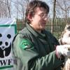 WWF Rimini