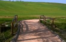 Giardini e paesaggi aperti 13/04/2014