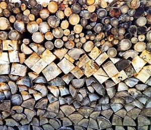 catasta di legno - foto Ilaria Menotti