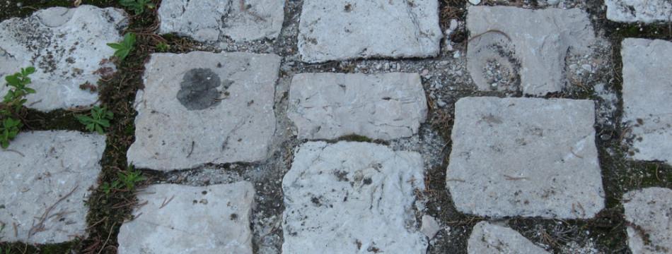 IMG_3280-Albereto-pavimentazione