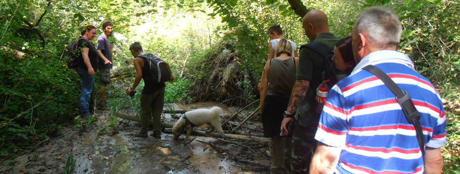Le selve del rio Montepietrino: un viaggio spazio-temporale