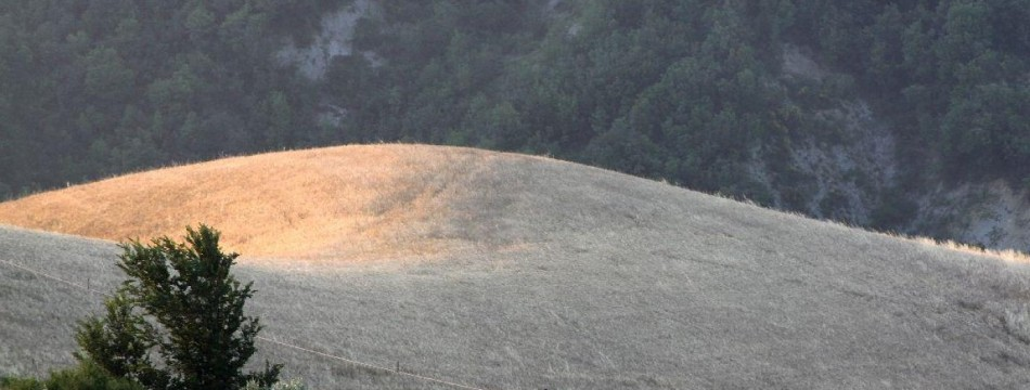 apassoduomo_itaca_camminata_bonromeo_campo-estate-valconca